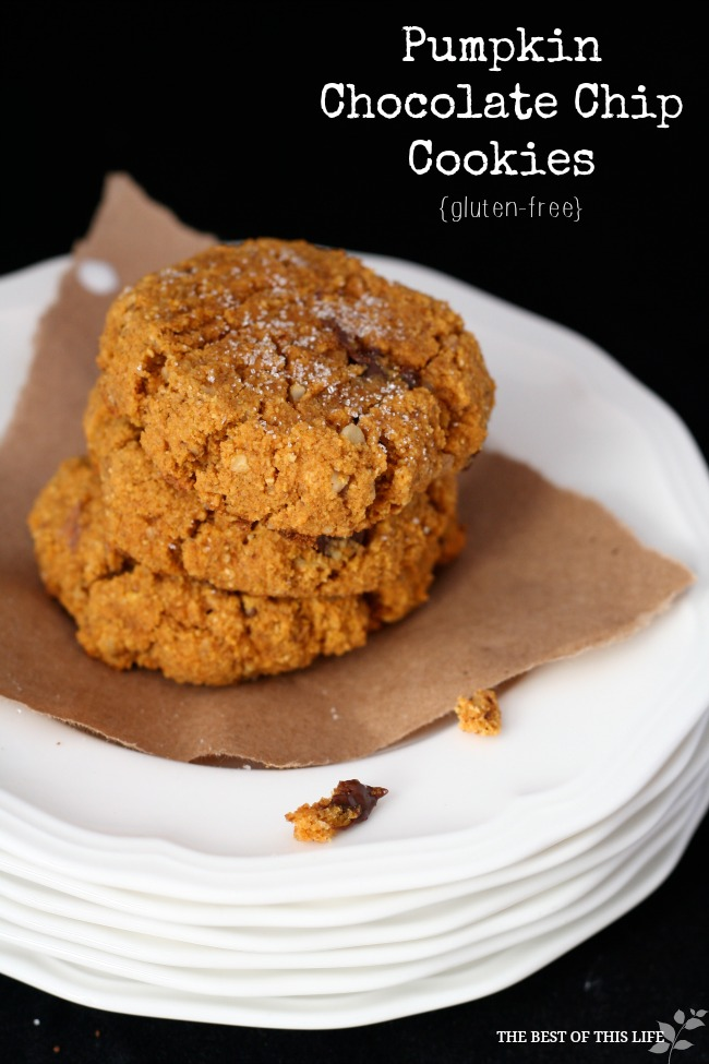 Ooey Gooey Pumpkin Chocolate Chip Cookies - The Best of this Life