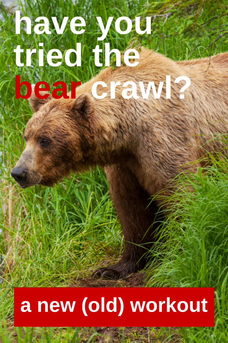 How To Do The Bear Crawl In 9 Easy Steps The Best Of